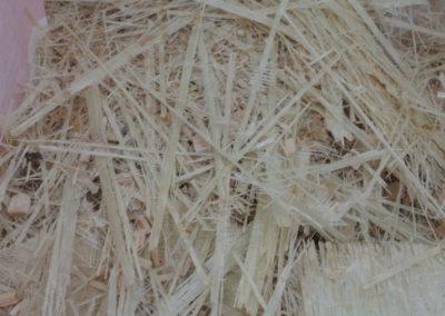 Acción B.2. Obtención de fibra tamaño grande